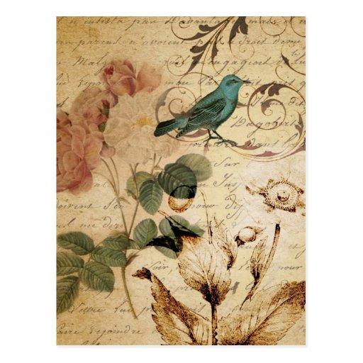 vintage botanical art rose teal bird floral girly postcards