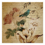 vintage botanical art rose teal bird floral girly poster