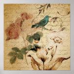vintage botanical art rose teal bird floral girly poster