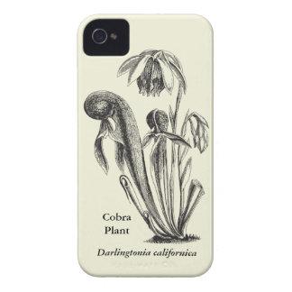 Vintage Botanical Cobra Plant iPhone 4 Case-Mate Cases