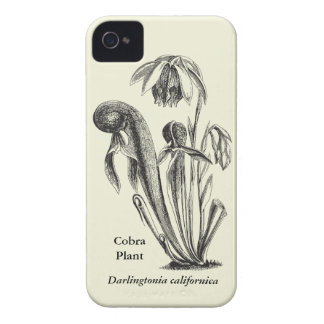 Vintage Botanical Cobra Plant iPhone 4 Case-Mate Cases