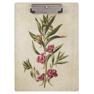 Vintage Botanical Floral Balsam Illustration Clipboard