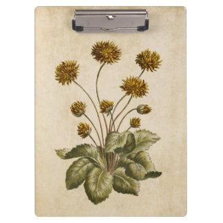 Vintage Botanical Floral Crowfoot Illustration Clipboard