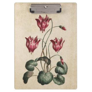 Vintage Botanical Floral Cyclamen Illustration Clipboard