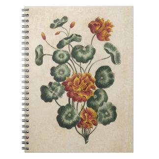 Vintage Botanical Floral Double Cresses Notebook