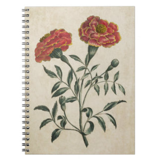 Vintage Botanical Floral French Marigold Spiral Notebook