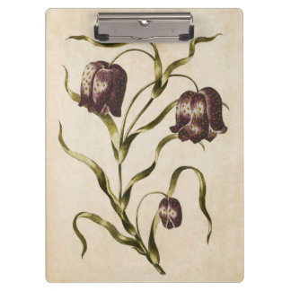 Vintage Botanical Floral Futillaria Illustration Clipboard