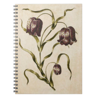Vintage Botanical Floral Futillaria Illustration Notebook