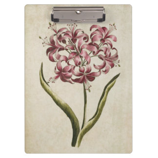 Vintage Botanical Floral Guernsey Lily Clipboard