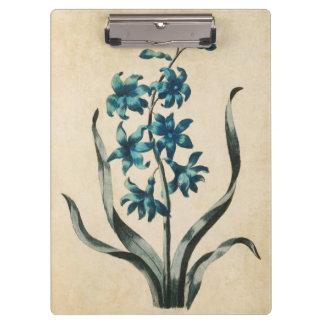 Vintage Botanical Floral Hyacinth Illustration Clipboard