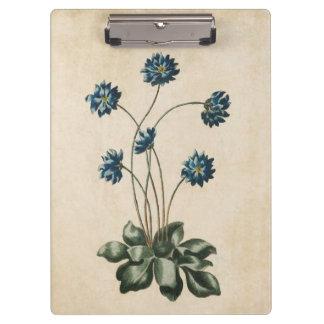 Vintage Botanical Floral Hypatica Illustration Clipboard