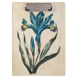 Vintage Botanical Floral Iris Illustration Clipboards