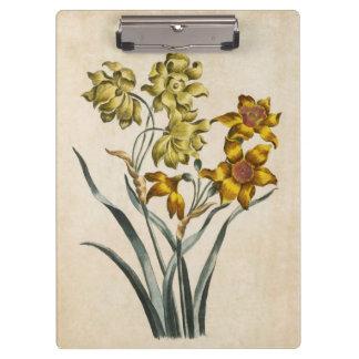 Vintage Botanical Floral Jonquil Illustration Clipboards