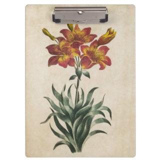 Vintage Botanical Floral Lily Illustration Clipboard