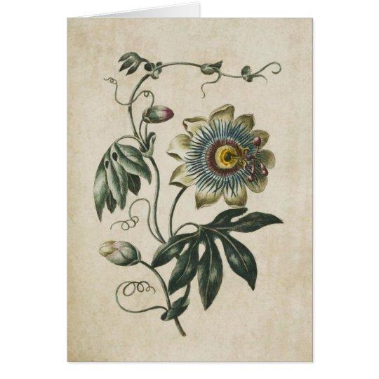 Vintage Botanical Floral Passion Flower Card