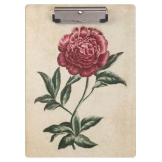 Vintage Botanical Floral Peony Illustration Clipboard