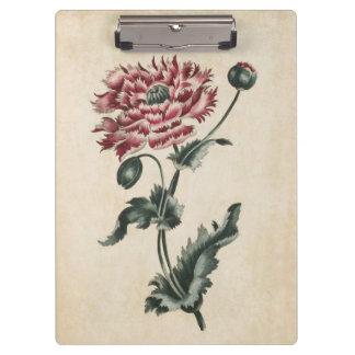 Vintage Botanical Floral Poppy Illustration Clipboards