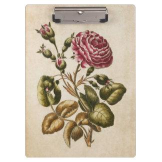 Vintage Botanical Floral Rose Illustration Clipboard