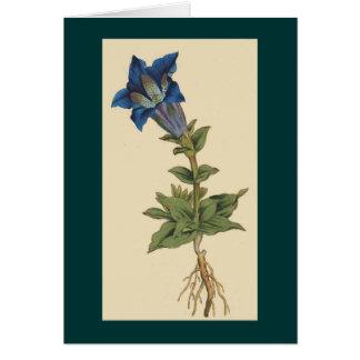 Vintage Botanical Flower Card