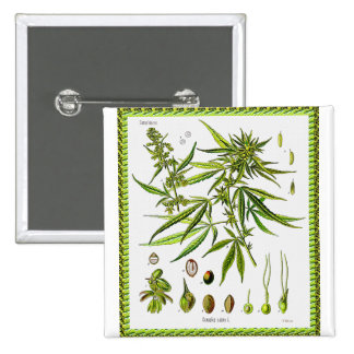 Vintage Botanical Illustration, 1897 - A weed 15 Cm Square Badge