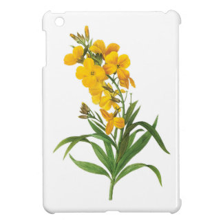 Vintage botanical illustration, yellow flowers. cover for the iPad mini