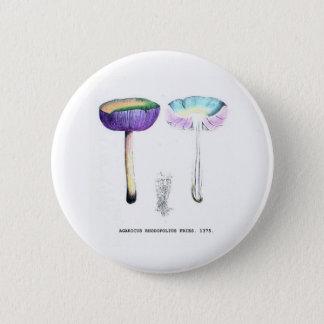 Vintage Botanical Mushrooms 6 Cm Round Badge