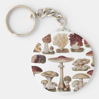 Vintage Botanical Mushrooms Key Ring