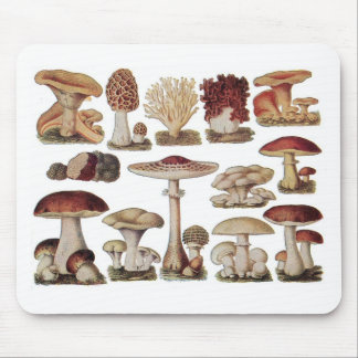 Vintage Botanical Mushrooms Mouse Mat