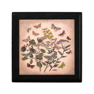 Vintage Botanical Prints Wildflowers Butterflies Small Square Gift Box