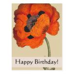 Vintage Botanicals Poppy Birthday Card Postcard