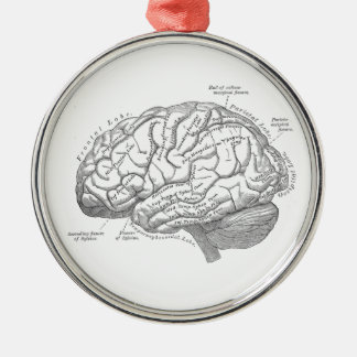 Vintage Brain Anatomy Christmas Ornament