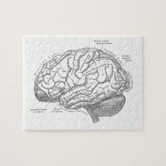 Vintage Brain Anatomy Jigsaw Puzzle