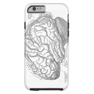 Vintage Brain Anatomy Tough iPhone 6 Case