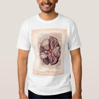 Vintage Brain Medical Illustration T Shirt