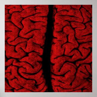 Vintage Brain Poster