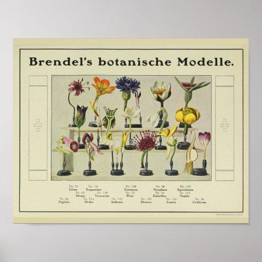 Vintage Brendel's Flower Model Ad Art Print