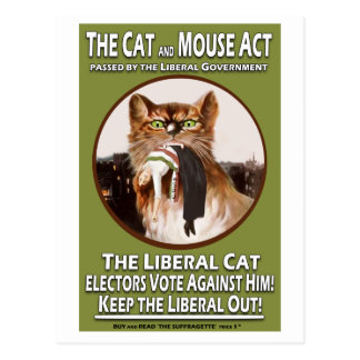 Vintage British Suffragette Cat and Mouse Act Postcard