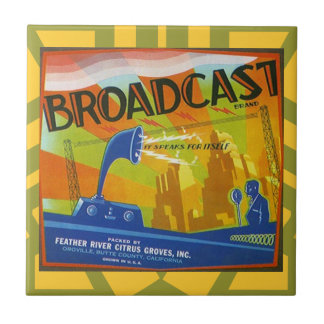 Vintage Broadcast Brand Citrus Produce Label Tile