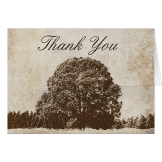 Vintage Brown Oak Tree Thank You Greeting Cards