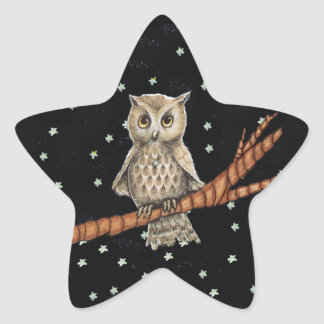 Vintage Brown Owl Necklace Crescent Moon Stars Star Sticker