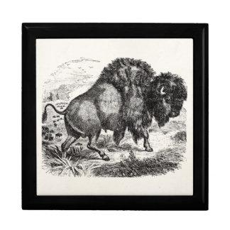 Vintage Buffalo Retro Bison Animal Illustration Large Square Gift Box
