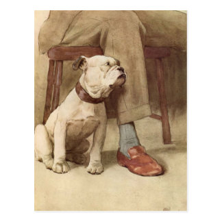 Vintage Bulldog Puppy Illustration Postcard