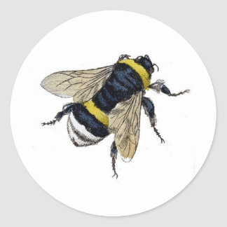 Vintage Bumble Bee Classic Round Sticker