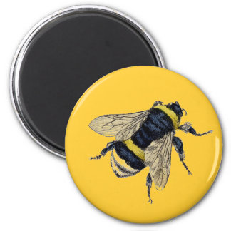 Vintage Bumble Bee Fridge Magnet