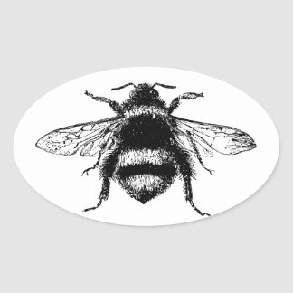 Vintage Bumble bee Oval Sticker