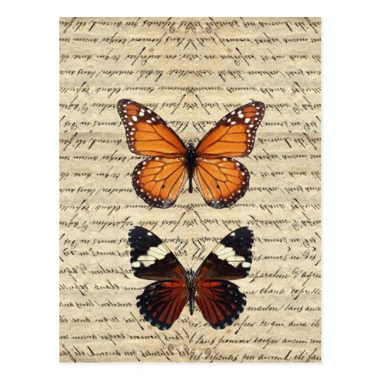 Vintage butterflies collection postcard