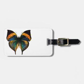 Vintage Butterfly - 1800 s Antique Butterfly Litho Tag For Bags
