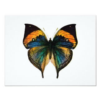 """Vintage Butterfly - 1800's Antique Butterfly Litho 4.25"""" X 5.5"""" Invitation Card"""