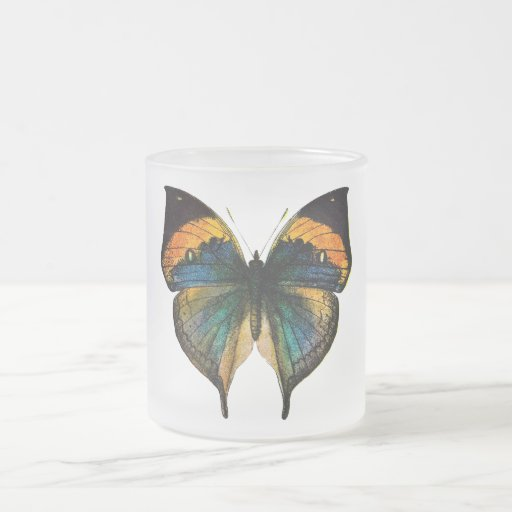 Vintage Butterfly - 1800's Antique Butterfly Litho Mug