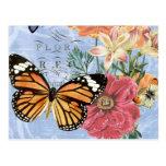 Vintage Butterfly Flora...postcard